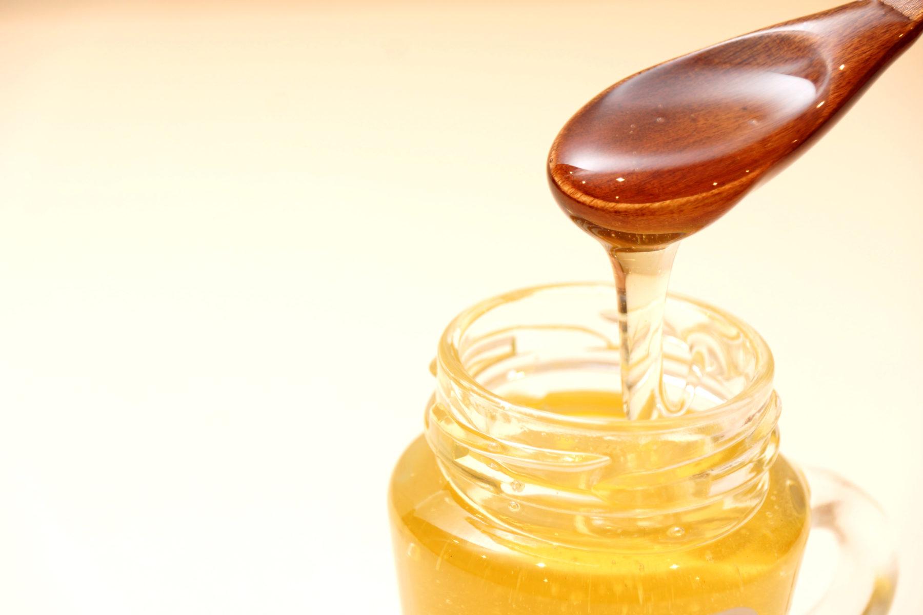 カサハラハニーのハチミツ